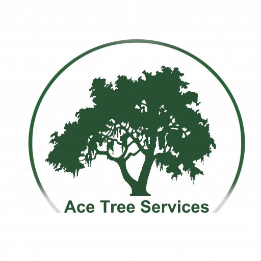 Ace Tree Services